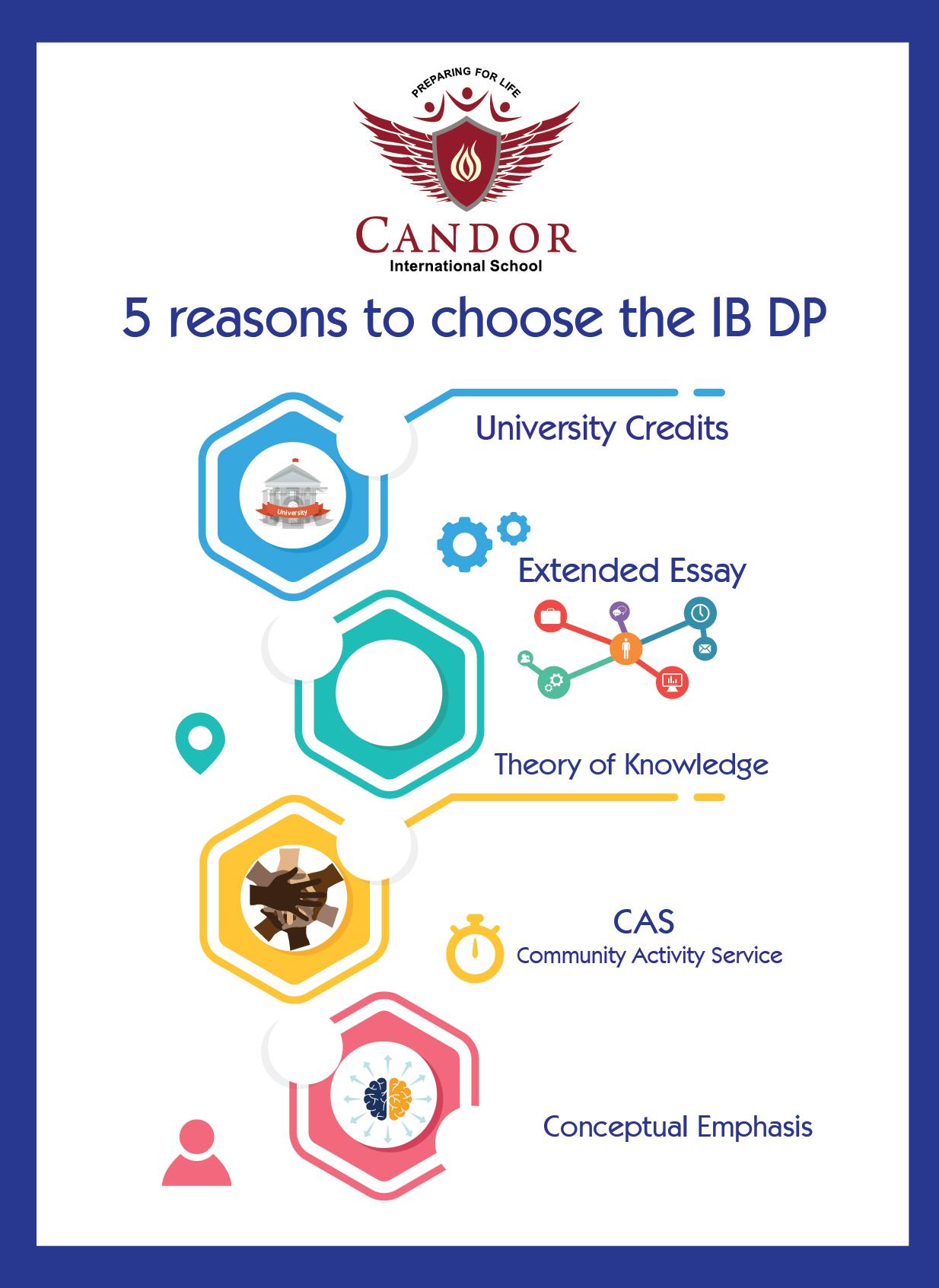 IBDP 1